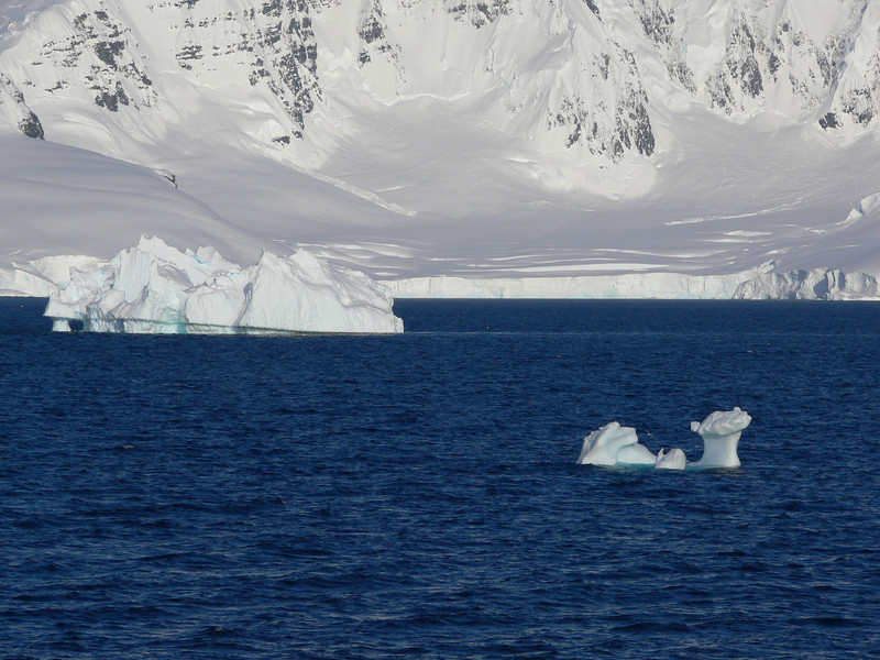 Scenes from the Gerlache Strait
