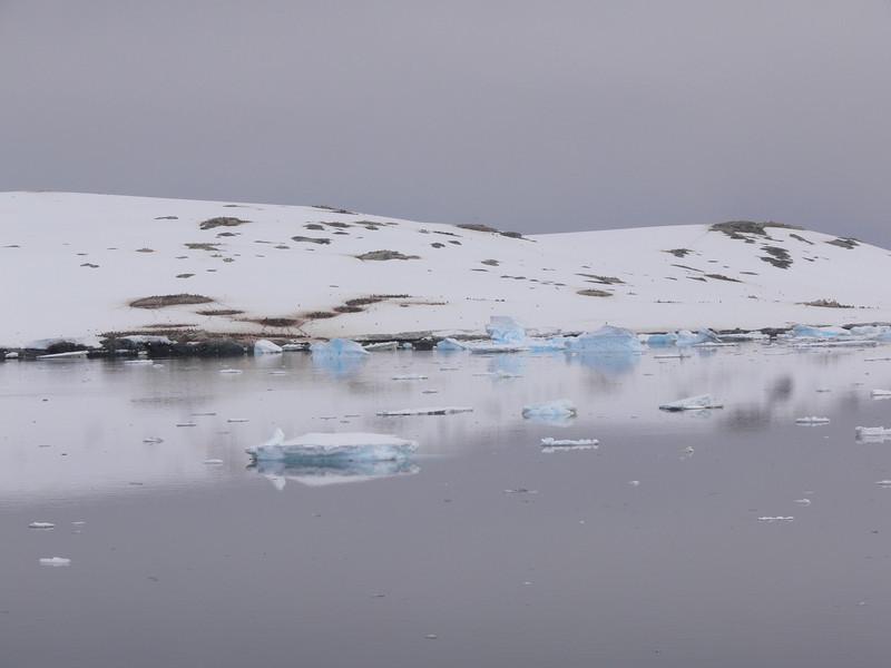 Penguin colonies of Pleneau Island