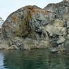 Rust colored lichen on the rocks