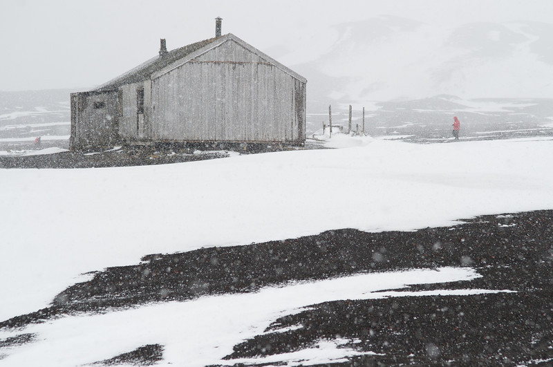 Building and Visitor, abandoned whaling station, Deception Island, Antarctica