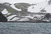 Chinstrap penguin colonies, Baily Head, Deception Island, Antarctica