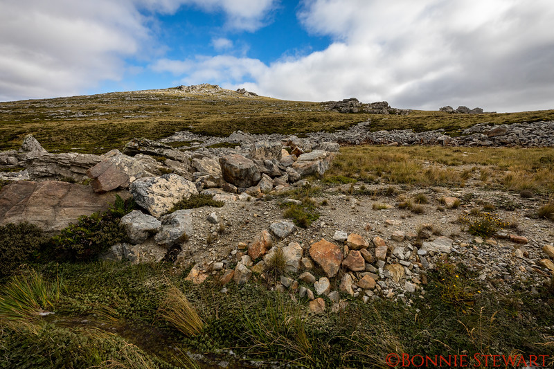 Geology tour - Rocks in the Falklands originated from South Africa!
