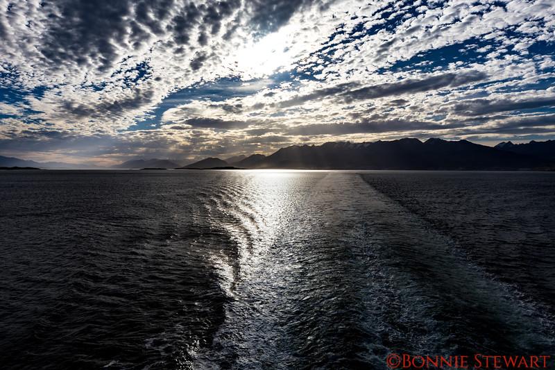 Sailing from Ushuaia and heading towards Antarctica