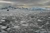 ANT-Fast ice, Paradise Bay-10974