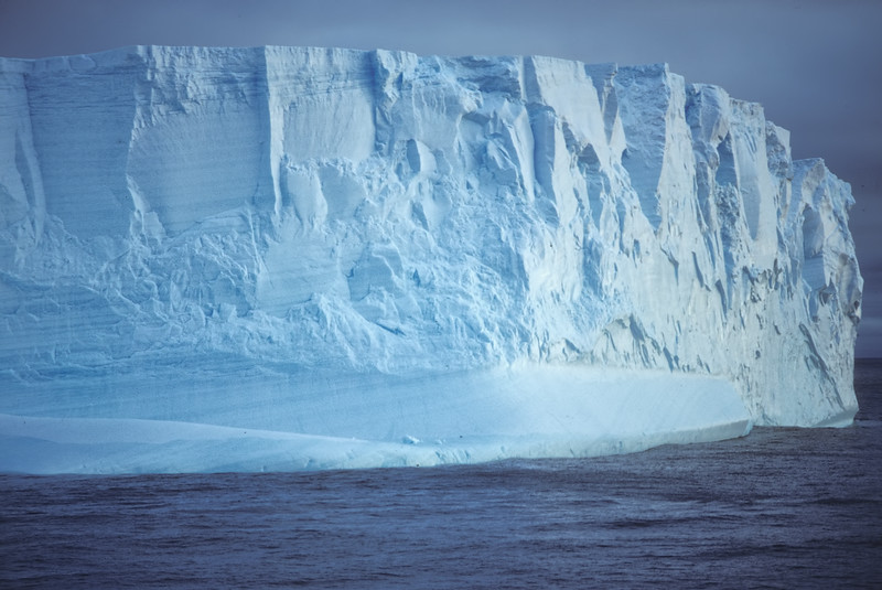 Iceberg and Penguin