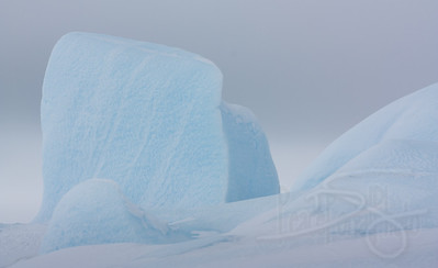 Trapped icebergs. Snow Hill Island, Antarctica