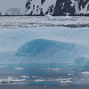 Lemaire channel cruise Antarctica with MS Fram