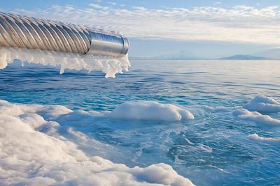 Salt water intake area.