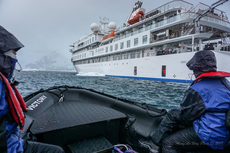 Antarctica-04274