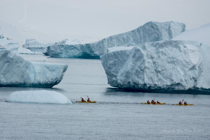 Antartica-00433