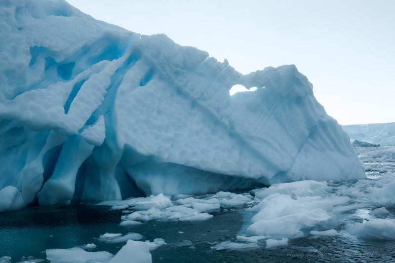 Antarctica-09967