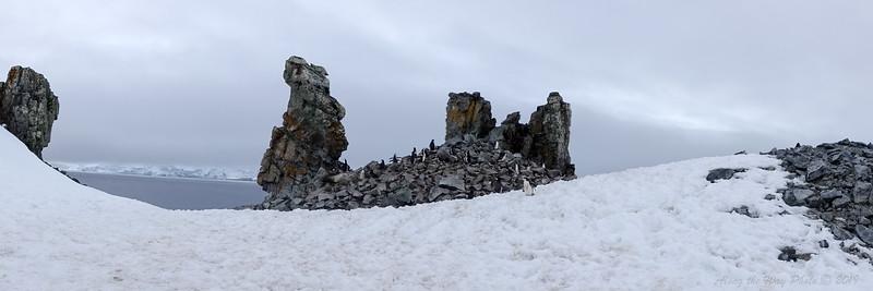 Antarctica-09221