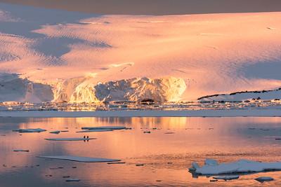 Penguins admire the glorious light / 11:46 pm / 12-23-15