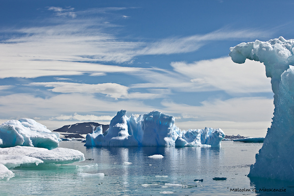 In Cierva Cove, Antarctica
