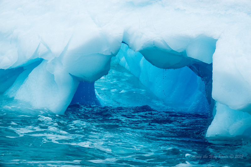 Antarctica-09668