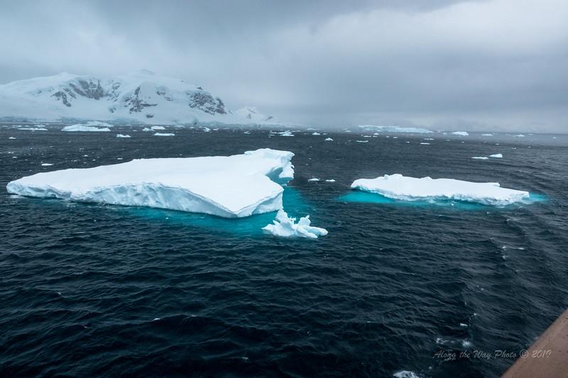 Antarctica-09761