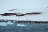 Antarctica-09772