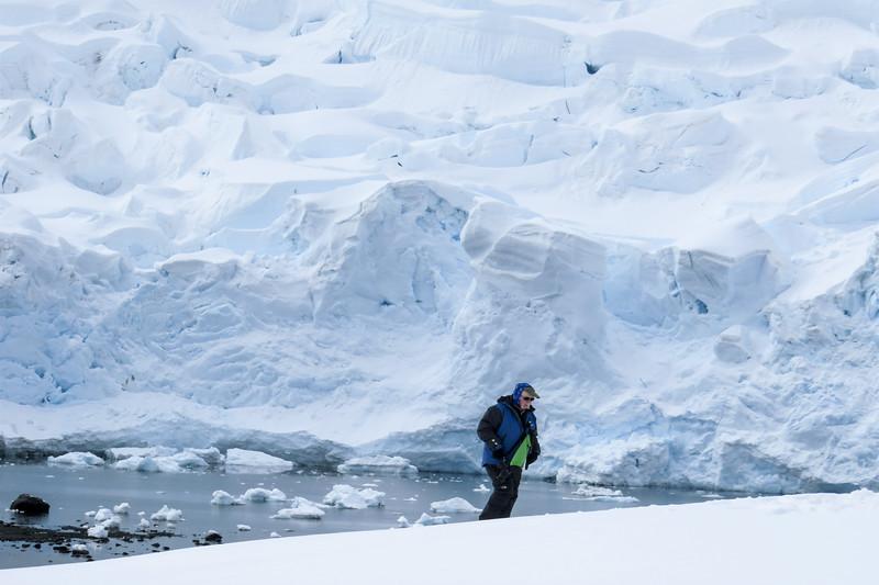 Antartica-5611