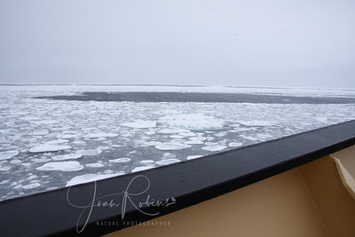 Pancake ice and the sea calms down