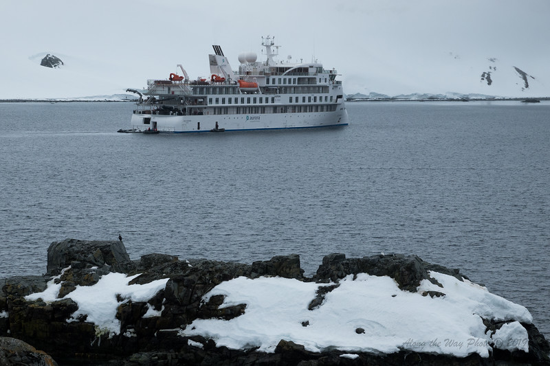 Antartica-09201