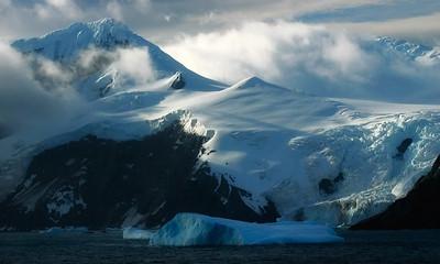 Point Wild, Antarctica