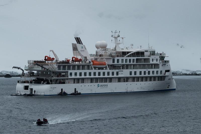 Antartica-9157
