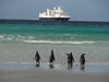 Magellanic penguins and the Silver Seas Explorer ship we spent 17 days on.