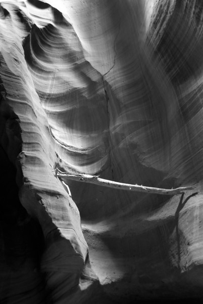 Even though the colors in the canyon were gorgeous, I think black and white really works.