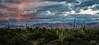 red blue sky_desert_7501c cf DrkCont ProC-2sRGB canvas Carefree clouds