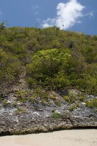 Green Island Hills