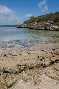 Coral Shore