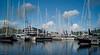 Sailing yachts, Antigua Charter Show, Falmouth harbor
