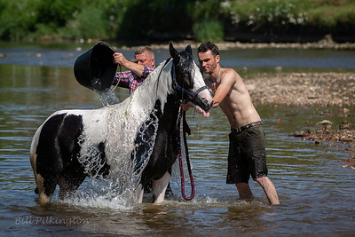 washing a horses back at Appleby horse fair 2018
