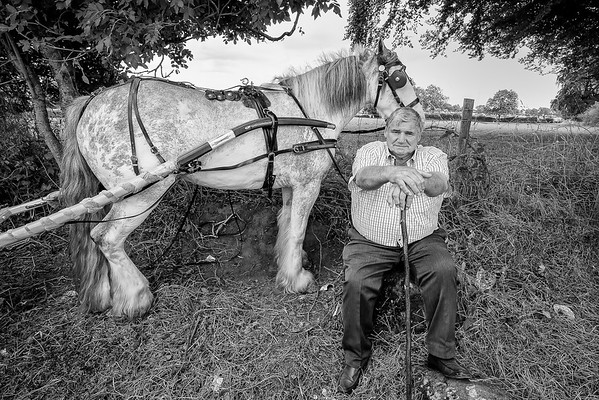 appleby horse fair