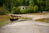 Big Logs Washing over the Road in Franklinton Louisiana when the Bogue Chitto River Breeched its high water mark