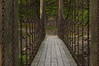 Crowley's Ridge State Park, Paragould, AR