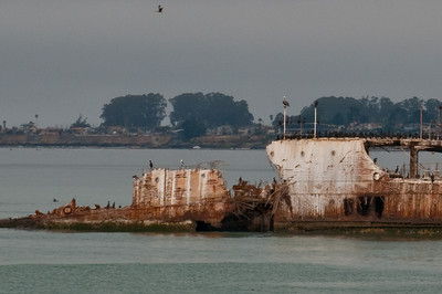 Rusting away but a nice habitat for the birds and seals.
