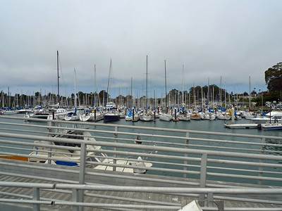 Santa Cruz inner harbor.