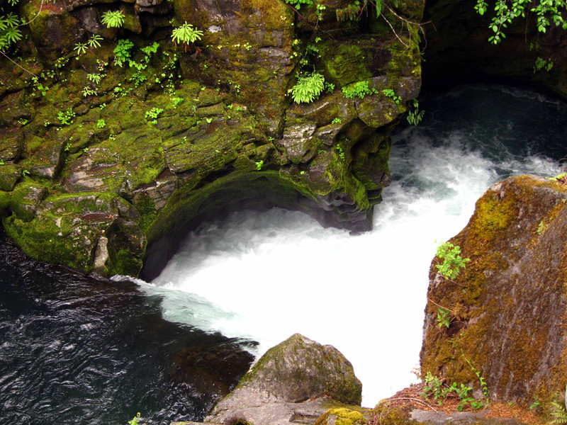 Waterfall on the North Umpqua River, on the hike in to Toketee Falls.