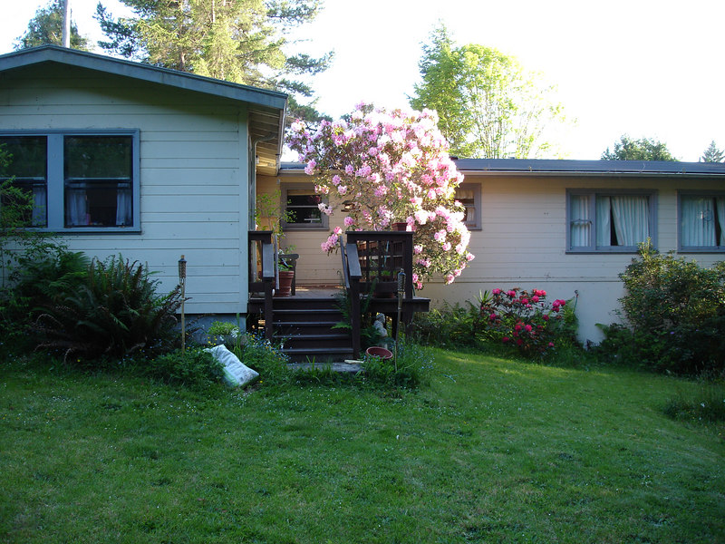Winslow and Caitlin's backyard deck.