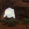 Pine tree arch and clouds