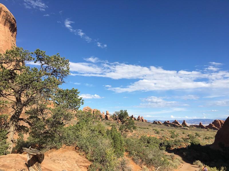 Devil's Garden trail views