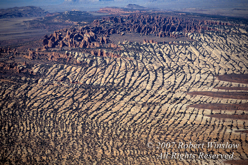 Aerial, Parallel Surface Cracks and Vegetation, Fins, Arches National Park, Moab, Utah, USA, North America
