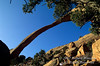 Landscape Arch, Arches National Park, Moab, Utah, USA, North America