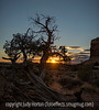 Sunset, Arches National Park, Utah; best viewed in the largest sizes