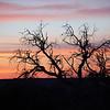 Sunset at Dead Horse Point, Utah