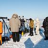 Polar paparazzi