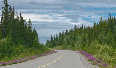 decorated Klondike highway