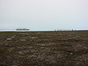 Tundra hike