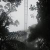 IMG_1663 - 2012-12-24 at 12-41-50